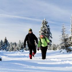 Manali honeymoon package from Pune 6 Nights 7 Days by Train