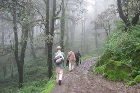 Manali honeymoon packages from Ahmedabad