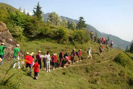 Manali tour packages from Chandigarh
