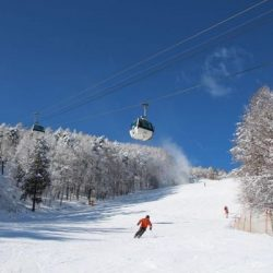 Manali tour package from Calicut 4 Nights 5 Days by Flight