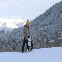 Manali tour package from Coimbatore 2 Nights 3 Days by Flight