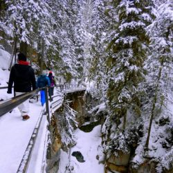 Manali tour package from Jaipur 3 Nights 4 Days by Flight