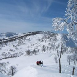 Manali tour package from Jalandhar 4 Nights 5 Days by Car