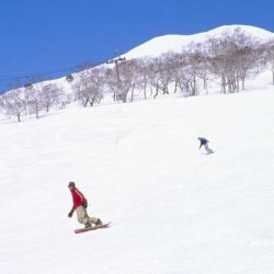 Manali tour package from Kalka 6 Nights 7 Days by Volvo