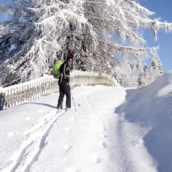 Manali tour package from Kolkata 6 Nights 7 Days by Train