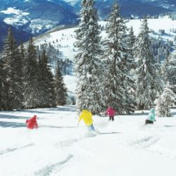 Manali tour package from Lucknow 2 Nights 3 Days by Flight