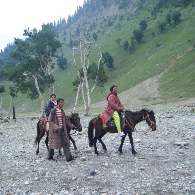 Manali tour package from Ludhiana 6 Nights 7 Days by Volvo
