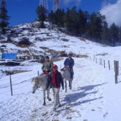 Manali tour package from Vizag 7 Nights 8 Days by Train